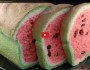 Watermelon Look-Alike Raisin Bread