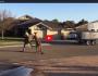 Wild kangaroo street fight