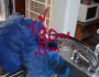 Parrot Turns The Sink On For A Shower And Likes The Pressure High