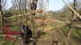 Chimpanzee Takes Down Drone Flying In ApeEnclosure