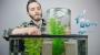 Make A Vacuum Suspended FishTank