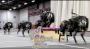Cheetah Robot Jumps OverHurdles