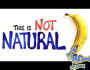 This Is NOTNATURAL